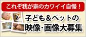 都道府県対抗WEB選手権「民のチカラ」開催中!