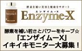 酵素 エンザイム-X