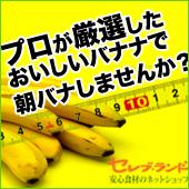 プロが厳選した野菜、フルーツで美味しくダイエット★セレブ・ランド